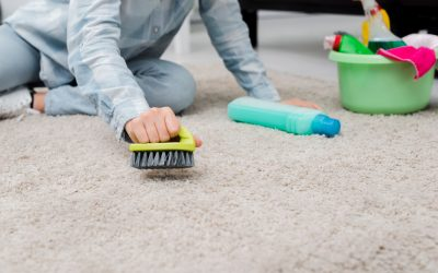 This is the Best Solution EVER for Carpet Cleaning